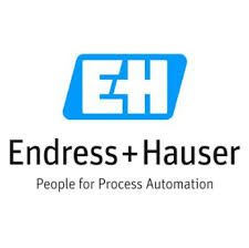 Picture for manufacturer Endress + Hauser